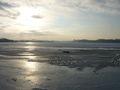 Eine trügersche Sicherheit: Die geschlosse Eisdecke am Großen Segeberger See ist grade einmal 6cm dick!